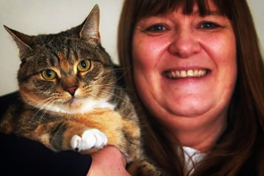 Кошка спасла жизнь хозяйке дважды котики истории из жизни