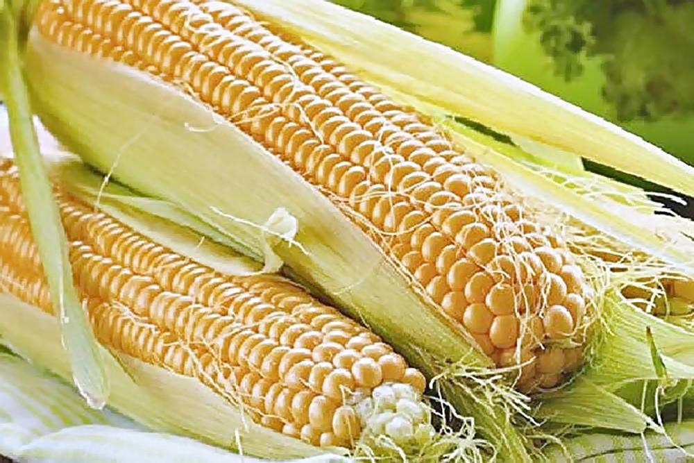 Какие продукты можно есть после шести? продукты правильное питание полезные советы здоровье диета