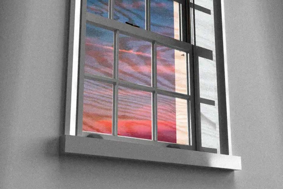 Прозрачное дерево, которое смогло бы заменить стеклянные окна в ближайшем будущем Взгляд в будущее